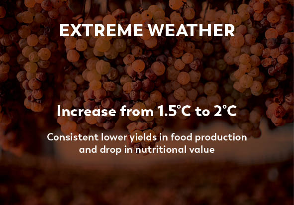 Climate Change Facts Extreme Weather climate change program