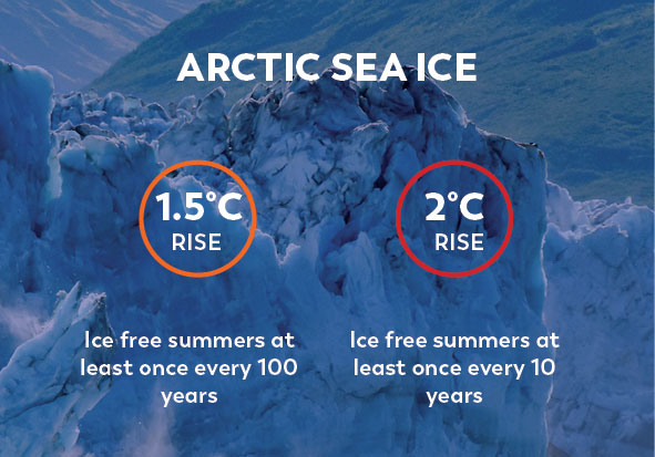 Climate Change Facts Arctic Sea Ice