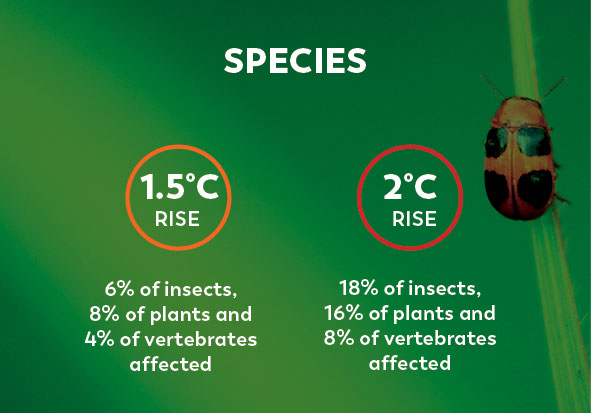 Climate Change Facts Species